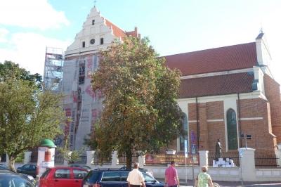 Katedra pw św. Michała Archanioła